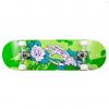 Playlife Skateboard Homegrown